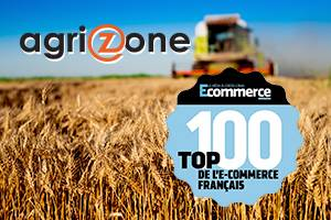 Top 100 des sites Ecommerce en France